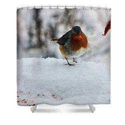 Shower Curtain featuring the photograph Robin Redbreast by Valerie Anne Kelly