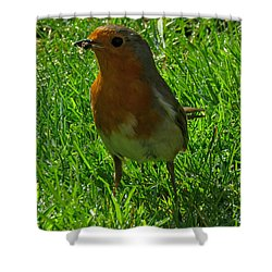 Robin1 Shower Curtain