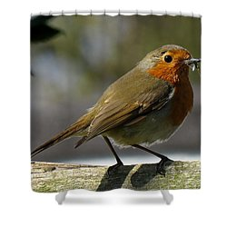 Robin3 Shower Curtain