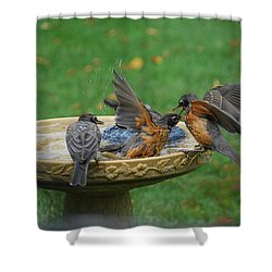 Robins Bathing Shower Curtain