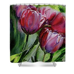 Rochelle's Springtime Tulips Shower Curtain