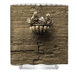 Shower Curtain featuring the photograph Rochester, New York - Wall And Flowers Sepia by Frank Romeo