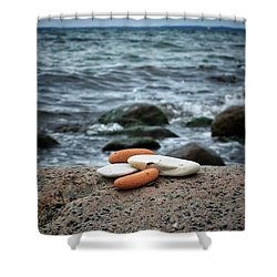 Shower Curtain featuring the photograph Rock Collection by Karen Stahlros