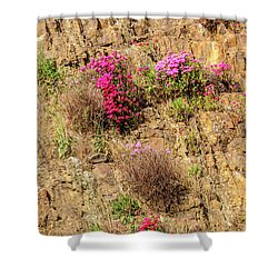 Rock Cutting 1 Shower Curtain by Werner Padarin