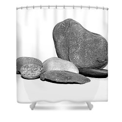 Rock Display Shower Curtain