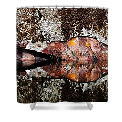Rock Face Reflected Shower Curtain