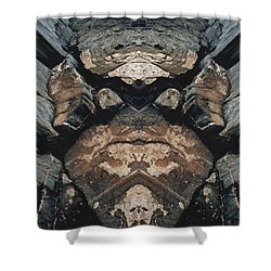 Shower Curtain featuring the photograph Rock Gods Rock Matron by Nancy Griswold
