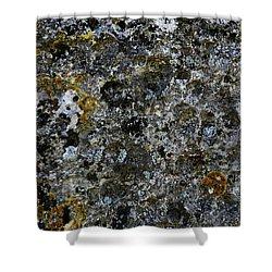 Rock Lichen Surface Shower Curtain