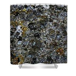 Rock Lichen Surface Shower Curtain