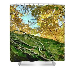 Shower Curtain featuring the photograph Rock Of Ages by Jeff Folger