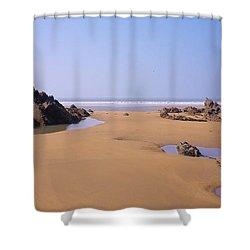 Rock Pools Shower Curtain by Richard Brookes