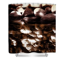 Shower Curtain featuring the photograph Rock Reflectin by Joseph Hollingsworth
