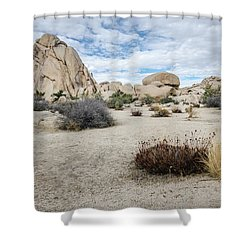 Rock Tower No.2 Shower Curtain
