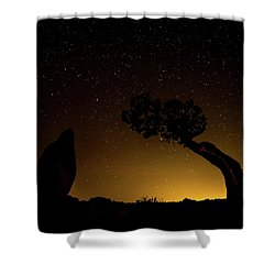 Shower Curtain featuring the photograph Rock, Tree, Friends by T Brian Jones