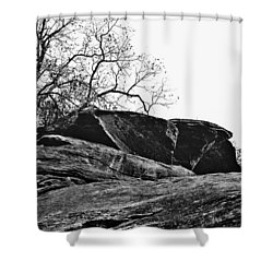 Rock Wave Shower Curtain by Steve Karol