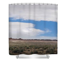 Rock With Wings Shower Curtain