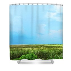 Rockefeller Wma Shower Curtain