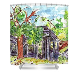 Shower Curtain featuring the painting Rockland Cabin by Cathie Richardson