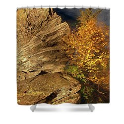 Rocks And Fall Colors At Night In The Blue Ridge Ap Shower Curtain by Dan Carmichael