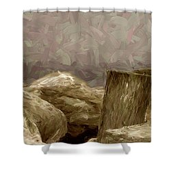 Rocks And Pilings Shower Curtain