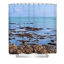Shower Curtain featuring the photograph Rocks And Seaweed And Seagulls In The Irish Sea At Howth by Semmick Photo
