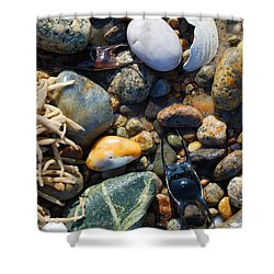 Rocks And Shells Shower Curtain by Charles Harden