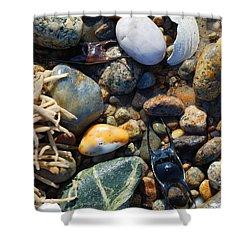 Rocks And Shells On Sandy Neck Beach Shower Curtain