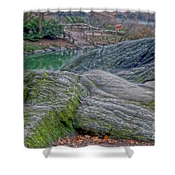 Shower Curtain featuring the photograph Rocks At Central Park by Sandy Moulder