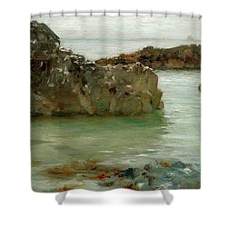 Shower Curtain featuring the painting Rocks At Newport by Henry Scott Tuke