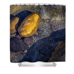 Rocks In Tidepool Shower Curtain
