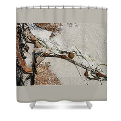 Rocks Longside Shower Curtain