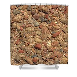 Rocky Beach 4 Shower Curtain by Nicola Nobile