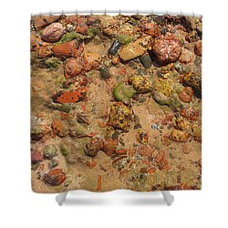 Rocky Beach 5 Shower Curtain by Nicola Nobile