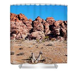 Rocky Ledge Shower Curtain by Rae Tucker