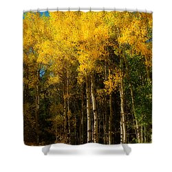 Rocky Mountain Aspen Color Shower Curtain by James BO  Insogna