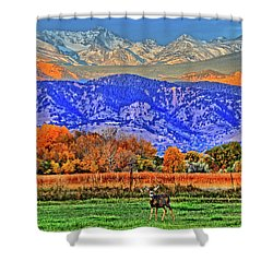 Shower Curtain featuring the photograph Rocky Mountain Deer by Scott Mahon