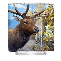 Rocky Mountain Elk Shower Curtain by Karon Melillo DeVega