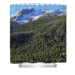 Shower Curtain featuring the photograph Rocky Mountain Evergreen Landscape by Dan Sproul
