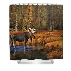 Rocky Mountain Wading Pool Shower Curtain