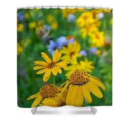 Shower Curtain featuring the photograph Rocky Mountain Wildflowers by Cascade Colors