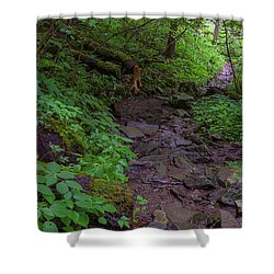 Rocky Path Shower Curtain