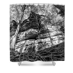 Rocky Roots Shower Curtain