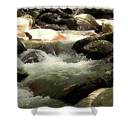 Shower Curtain featuring the mixed media Rocky Stream 4 by Desiree Paquette