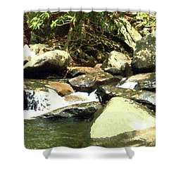 Shower Curtain featuring the mixed media Rocky Stream 5 by Desiree Paquette