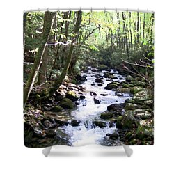 Shower Curtain featuring the mixed media Rocky Stream 6 by Desiree Paquette