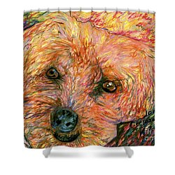Rocky The Dog Shower Curtain