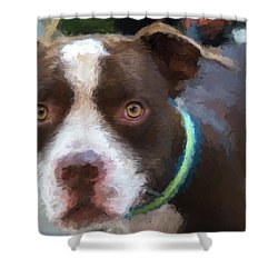 Rocky The Renoir Shower Curtain