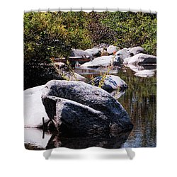Rocky World Shower Curtain by Donna Blackhall