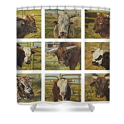 Rodeo Royalty Shower Curtain