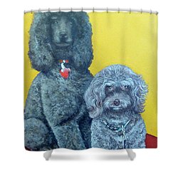 Roger And Bella Shower Curtain by Tom Roderick